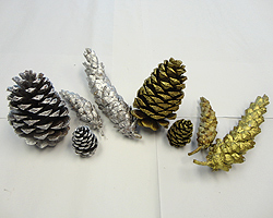 Gilded & Frosted Pine Cones
