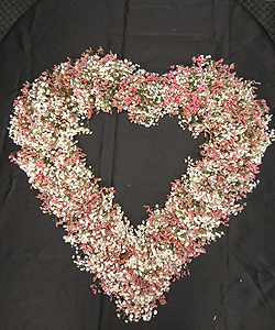 Limonium Heart Wreath